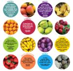 Se você fosse uma fruta?